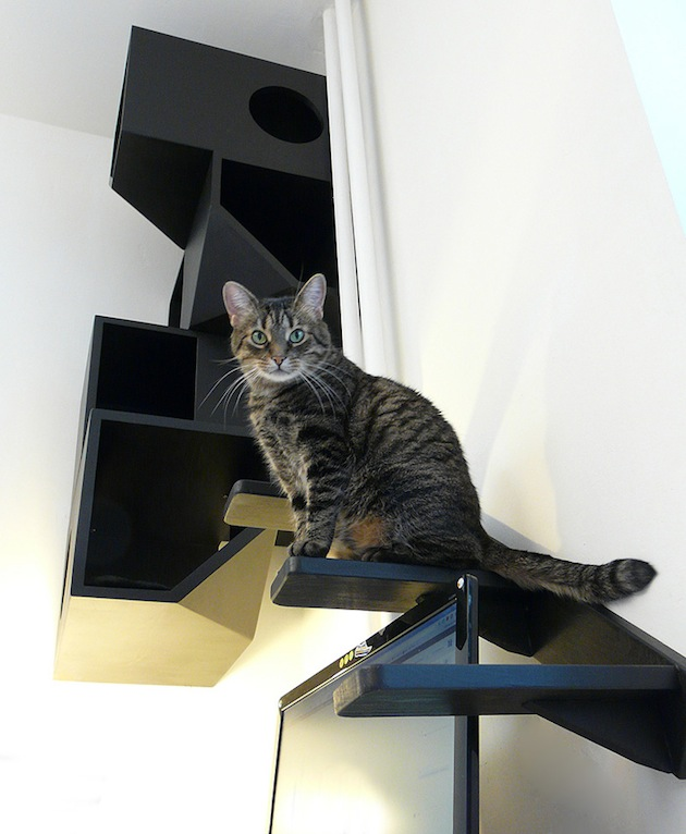 Cat Beds Wall Mounted Cat Beds